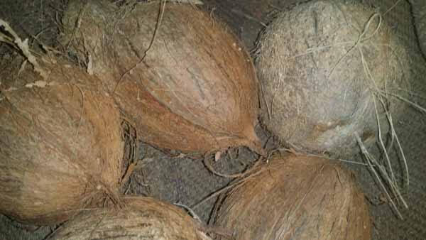 Raw Coconut shell removed